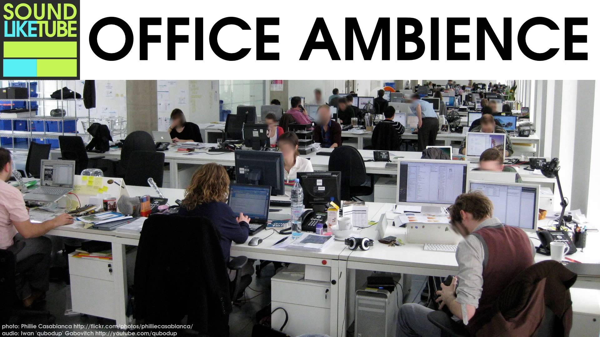 Ruido de oficina 12 horas de mugidos y otros grandes for Ruido oficina